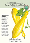 Squash Summer Early Prolific Straightneck Organic HEIRLOOM Seeds