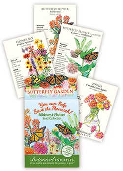 Butterfly Collection Midwest Flutter