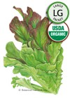 Lettuce Leaf Salad Bowl Blend Organic HEIRLOOM seeds (LG)