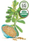 Sprouts Fenugreek Organic HEIRLOOM Seeds (LG)